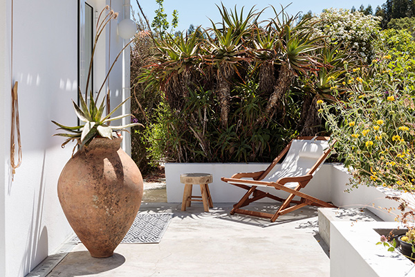 Outdoor view with plants at Lua Nua, Alentejo, Portugal